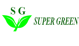 Super Green International Group Limited
